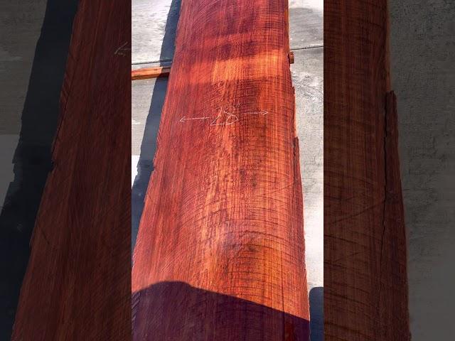 Old Growth Redwood Slab #30