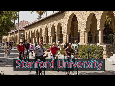 Stanford University | Bachelor Degree Online University