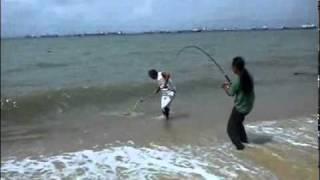 Singapore Beach Fishing - Barra 5.2kg.mp...