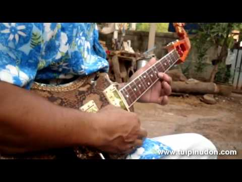 พิณทิพย์อุดร:เพลงไทยดำรำพัน