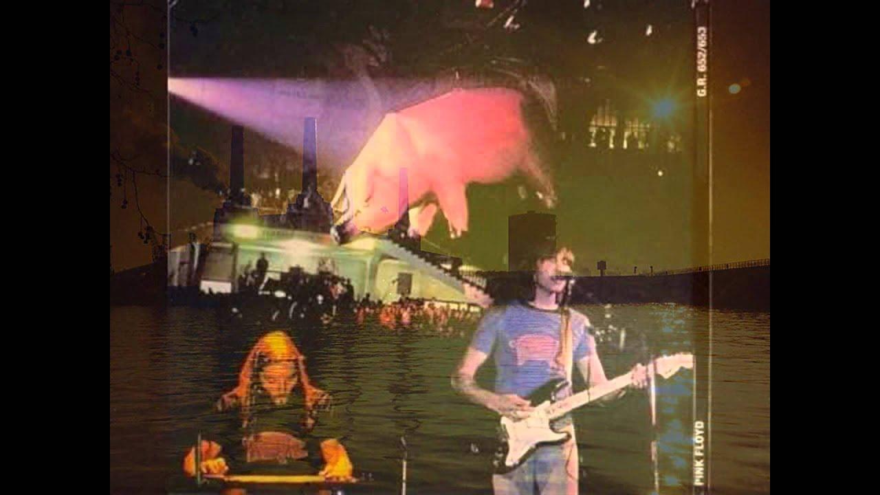 Pink floyd animals - Pink Floyd Animals 40