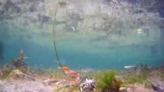 Spinner Jig Orange 13gr YouTube Videos