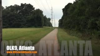 Got Distance Down?   2 Year Old Rottweiler   Atlanta Dog Training