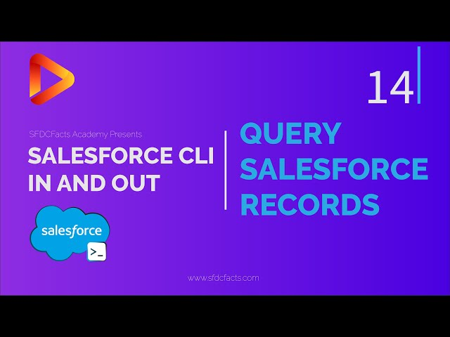 SFDX and Salesforce CLI Course   14 - Query Salesforce Records Using CLI   SOQL
