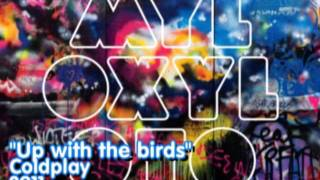 Baixar - 14 Up With The Birds Coldplay Official Grátis
