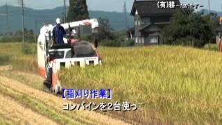 米作り、作業風景をご紹介します。