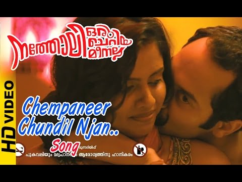 Natholi Oru Cheriya Meenalla Malayalam Movie | Chempaneer Chundil Njan Song | Malayalam Song | HD