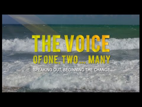 The Voice: Speaking Out, Beginning the Change