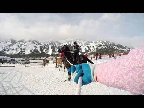Skijoring – Towed Behind A Horse At 40 MPH – 100% GoPro