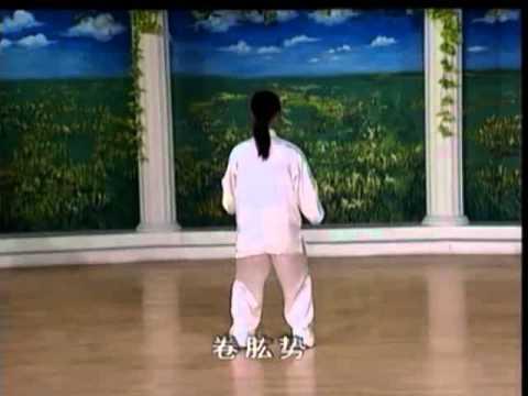 八式太極拳(8攬雀尾)   Doovi