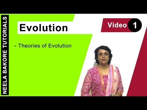 Evolution - Theories of Origin of Life