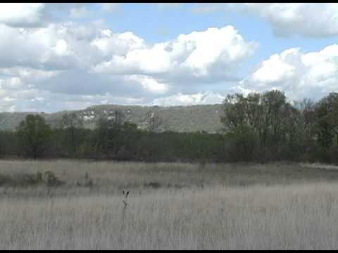 Upper Mississippi Wildlife Refuge- Hiking Trail