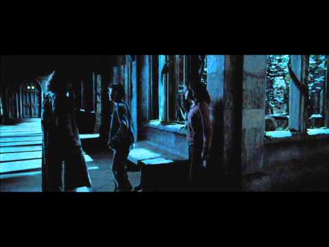 Harry Potter and the Prisoner of Azkaban - Harry and Hermione help Sirus escape (HD)