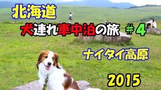 総面積約1700ha(東京ドーム358個分!)、公共牧場として広さ日本一のナ...