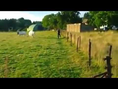 United States of Obama (Documentaire de 2011 sur Obama et l'opinion publique)de YouTube · Durée:  52 minutes 38 secondes