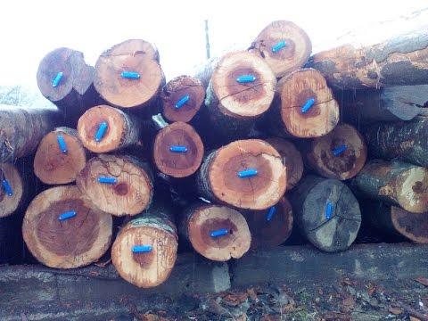 Испытания RFID меток для древесины в Апшеронске