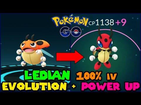 Evolving 100 Iv Ledyba To Ledian Power Up Pokemon Go Gen 2