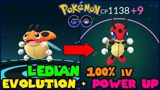 Ledyba Evolution