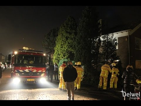 01-01-2015 Spoedmelding coniferen in brand Holzstraat Harderwijk - YouTube
