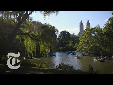 The Microbes of Central Park   The New York Times