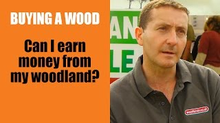 Buying A Wood: Can I Earn Money From My Woodland?