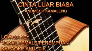 Karaoke Cinta Luar Biasa Andmesh Vokal Female/Perempuan Lower Key Gitar Akustik
