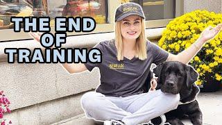 Guide Dog Training on Escalators, Food Refusal, & More!