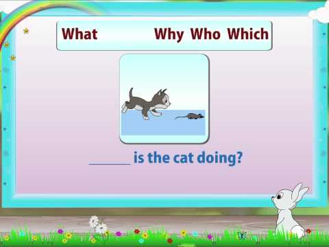 Learn Grade 2 - English Grammer - Question Words