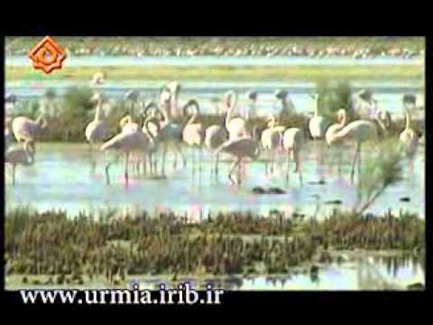 Urmiye Gölü Ulusal Parki - National Park Lake Urmia - پارک ملی دریاچه اورمیه