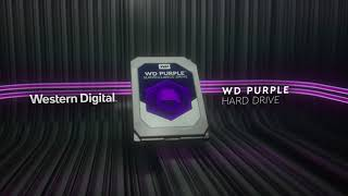Western Digital 6To Purple WD60PURZ vidéo