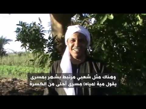 أنا الشاهد: كيف يلتزم المزارعون بالتقويم الفرعوني في صعيد مصر  - نشر قبل 2 ساعة