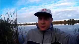 Рыбалка в Калининграде //// KONIGFISHING ////  Жабовник в  п.Кумачово