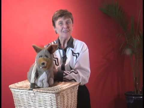 Puppet Basics: Glenda Bonin Shows How to Use a Puppet Without a Puppet Stage