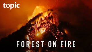 The Oregon Eagle Creek Fire | Topic