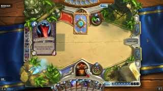 HearthStone: You Wouldn