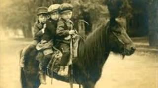 The Horse of Demerara