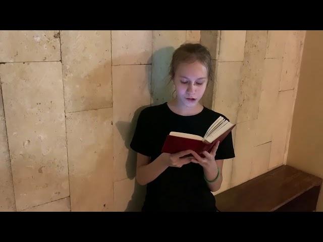 Иванова Ирина читает произведение «Все лес и лес. А день темнеет...» (Бунин Иван Алексеевич)