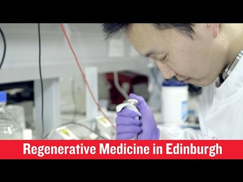 British Heart Foundation - Edinburgh, where research in the lab is saving lives
