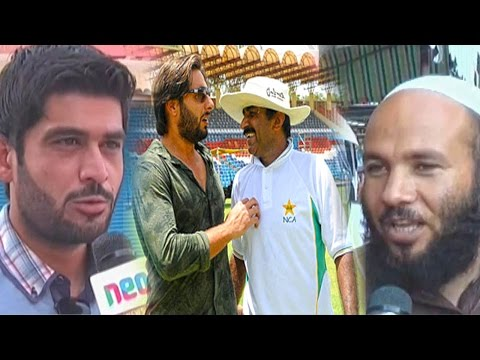 Public Reaction on Shahid Afridi & Javed Miandad Fight | Neo News Latest