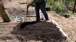 Sowing Baby Leaf Kale