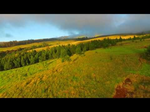 Kula Ranch and Farm Land | Kekaulike Ave | Kula, HI