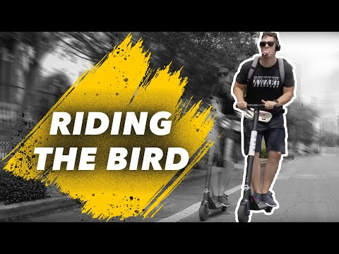 Bird Scooter Ride Through San Antonio To Our New Listing!  122 Alamosa Ave!