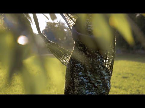Ghana Fashion Video