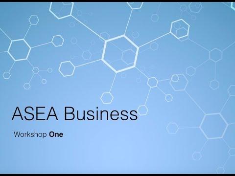 ASEA Business Basics - workshop 1