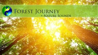 Meditation Music: Relaxing Music: New Age Music; Music for Relaxation; Yoga Music Playlist  🌅519