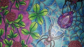 Summernights et sa toile d'araignée: fond aux polychromos