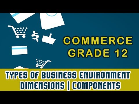 Commerce 12 | Types of Business Environment | Dimensions | Components | Part 10