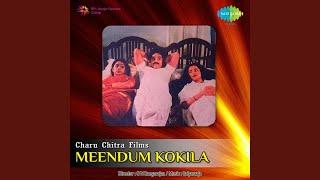 Chinna Chiru Vayathil