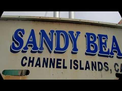 Sandy Bea 08/14/19