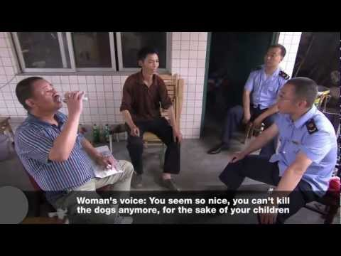 Amazing women in China fighting dog meat industry & saving them!